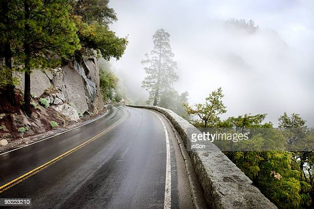 Winding road on foggy mountain surrounded tree