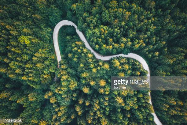 winding road - single lane road stock pictures, royalty-free photos & images