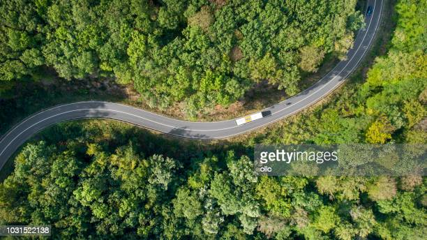winding road through the forest - traffic stock pictures, royalty-free photos & images