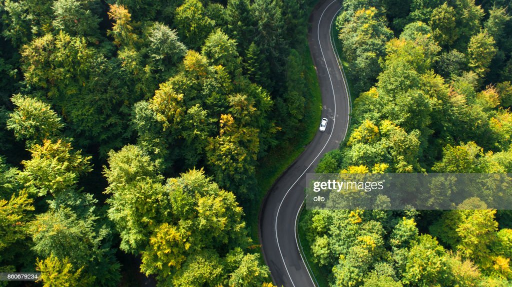Kurvenreiche Straße durch den Wald : Stock-Foto