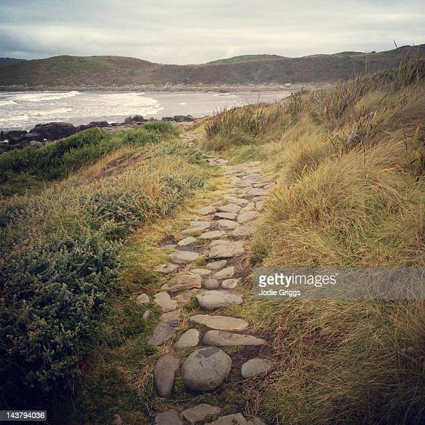 Winding rock path leading to beach