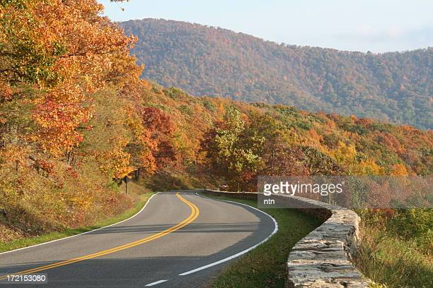 Winding rural road with trees in autumn