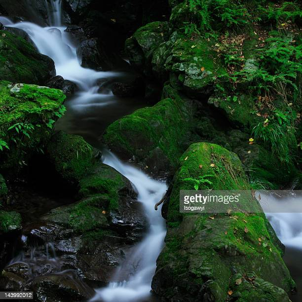 winding stream - isogawyi stock pictures, royalty-free photos & images