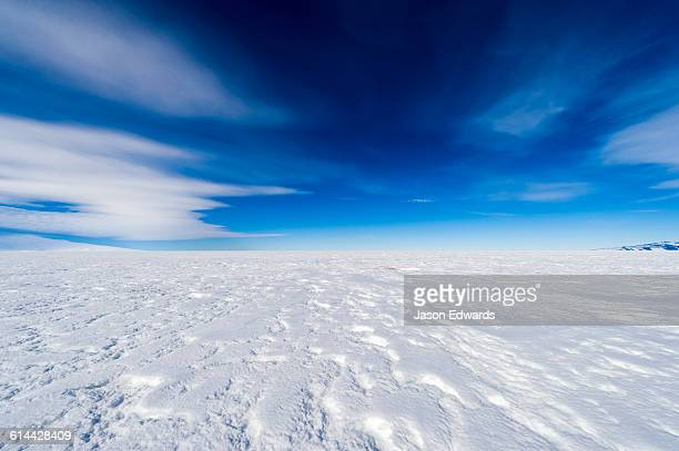 blue sky above a vast snow plain on top of the ross ice shelf. - ross ice shelf stock photos and pictures