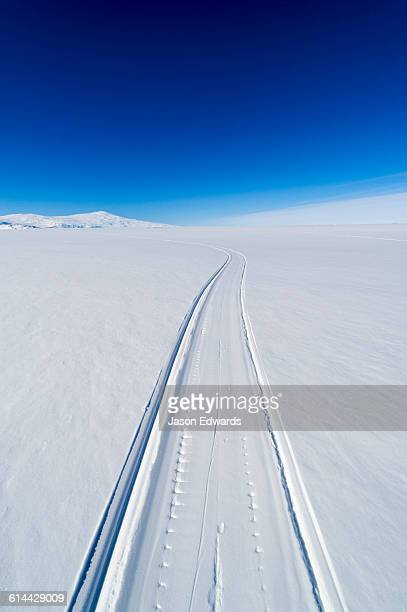 skiddoo tracks cross the snow on the vast barren ross ice shelf. - ross ice shelf stock photos and pictures