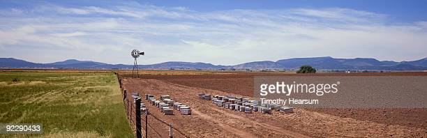 windmill and bee boxes in plowed field - timothy hearsum stock-fotos und bilder