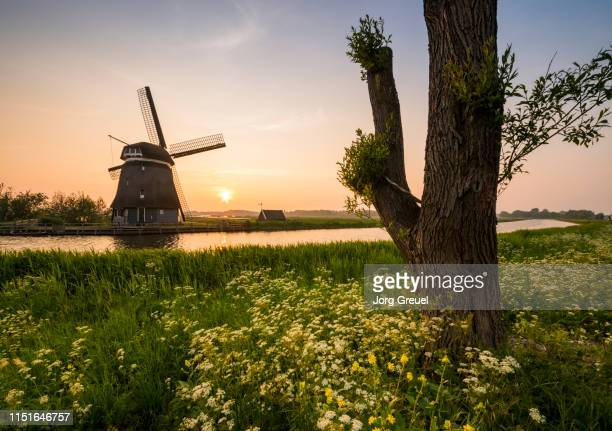 windmill by canal at sunset - north holland stock pictures, royalty-free photos & images
