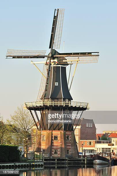 molino de viento de adriaan en haarlem, los países bajos - haarlem fotografías e imágenes de stock
