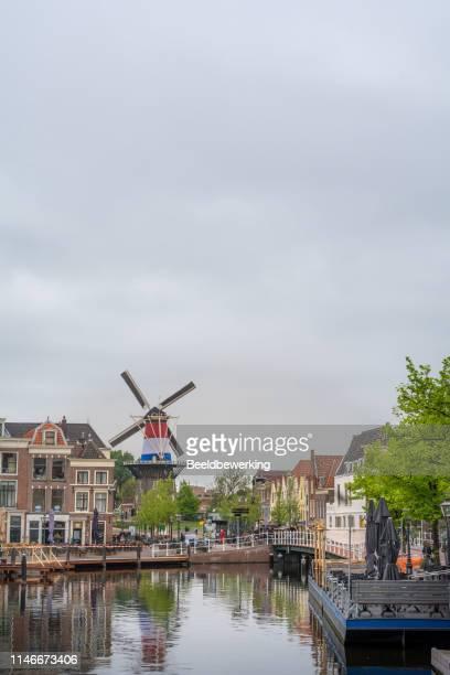 ドイツ国内色のウィンドミル・デ・ヴァルク (ファルコン) - オランダ 王の日 ストックフォトと画像