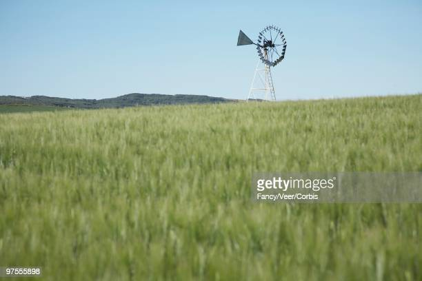 windmill in field - climat stock pictures, royalty-free photos & images