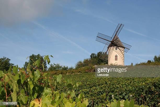 windmill in French vineyard burgundy