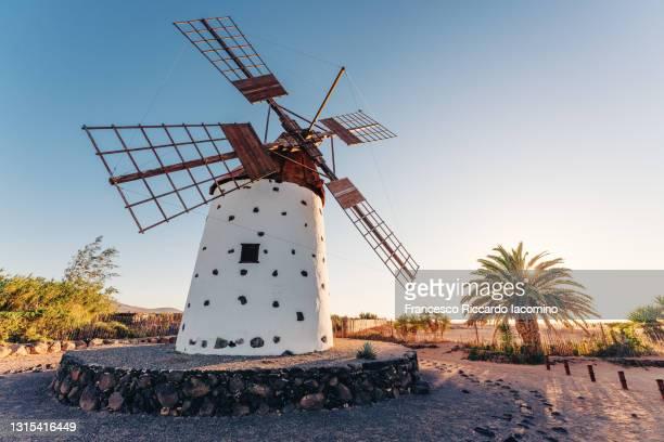 windmill in fuerteventura at sunset. canary islands, spain - francesco riccardo iacomino spain foto e immagini stock