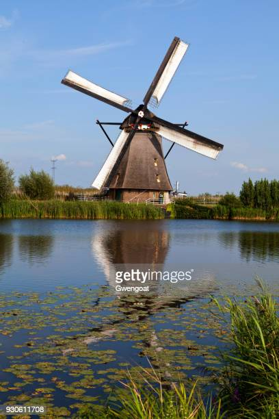 windmill in kinderdijk, netherlands - gwengoat stock pictures, royalty-free photos & images