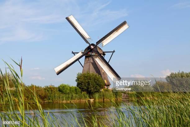 windmolen in kinderdijk, nederland - gwengoat stockfoto's en -beelden
