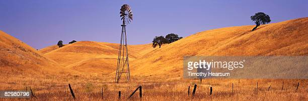windmill in oak studded golden hills - timothy hearsum ストックフォトと画像