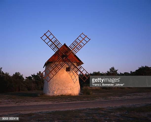 Windmill near Trees