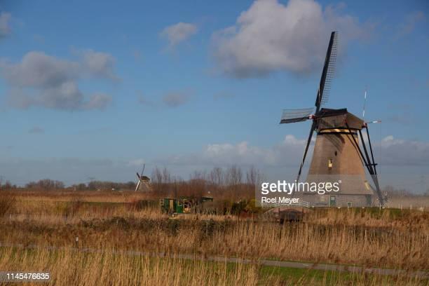windmill of unesco world heritage site kinderdij; in wetland area - キンデルダイク ストックフォトと画像