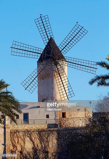 Windmill on Palma Seafront