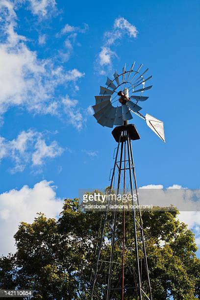 windmill - traditional windmill stock photos and pictures