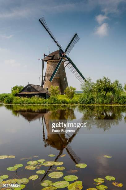 Windmill reflecting in water, Kinderdijk, South Holland, Netherlands