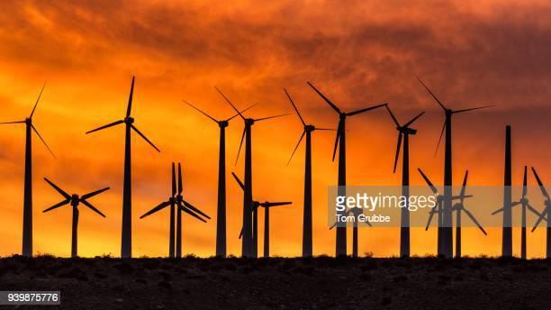 Windmill Sunset 3