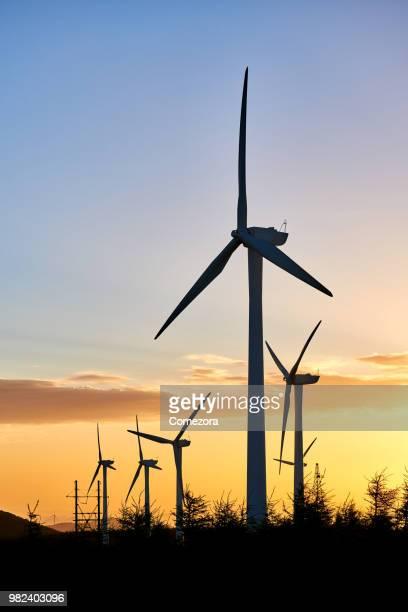Windmill & Wind Turbines