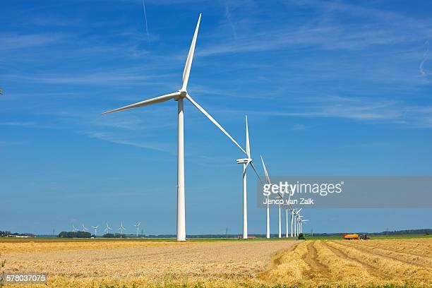 windmills and harvesting wheat - biddingshuizen stockfoto's en -beelden