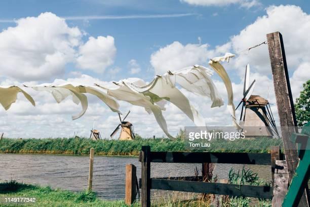windmills at kinderdijk, netherlands - キンデルダイク ストックフォトと画像