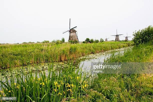 Windmills Built Around 1740 Along Nieuwe Waterschap To Drain The Excess Water From The Alblasserwaard Polders Kinderdijk Netherlands