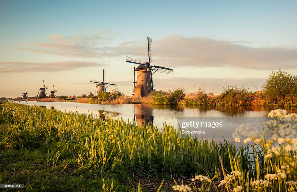 Windmills in Kinderdijk (Netherlands) : Stock Photo