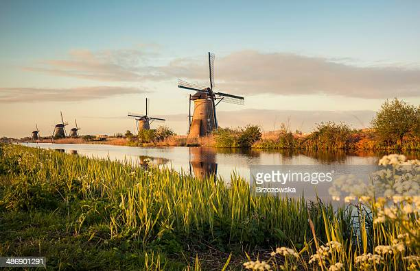 windmills in kinderdijk (netherlands) - landschap stockfoto's en -beelden