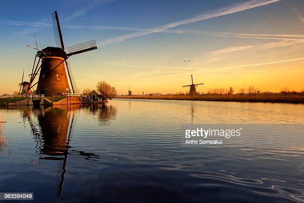 Windmills in sunset
