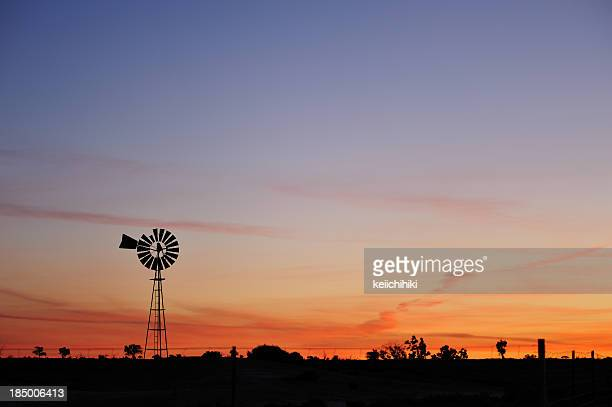Windmills in the sunrise