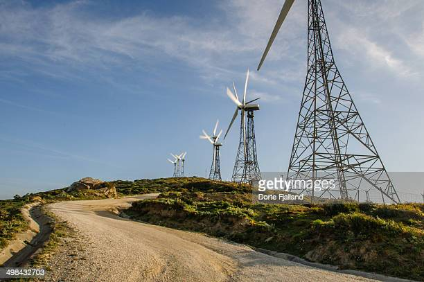 windmills on a hill - dorte fjalland stock pictures, royalty-free photos & images