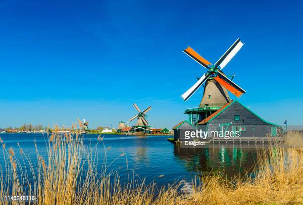 windmills on the riverbank, zaans schans, north of amsterdam, holland - amsterdam stock pictures, royalty-free photos & images