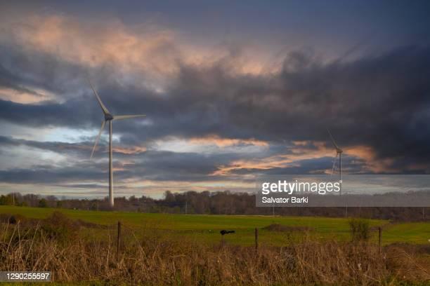 windmills - テキルダー ストックフォトと画像