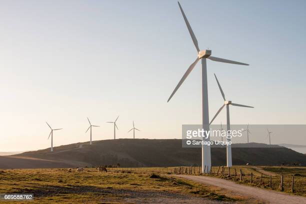 windmills - windmills stock photos and pictures