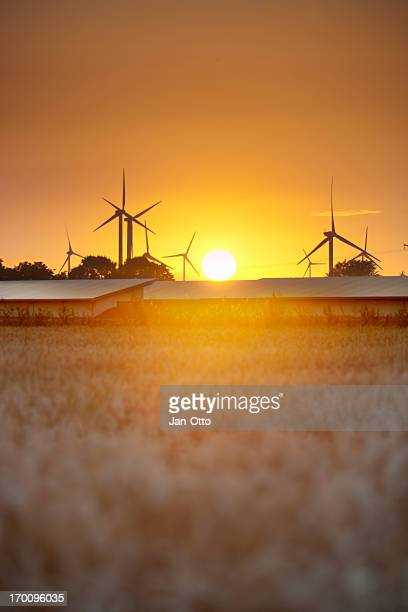 Windmills with solar panels and sunset