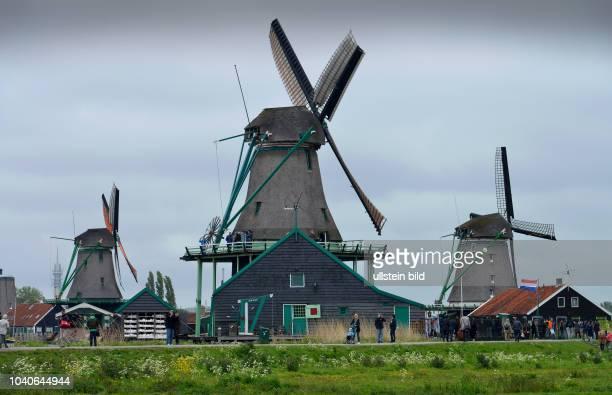 Windmuehlen Freilichtmuseum Zaanse Schans Zaanstad Niederlande