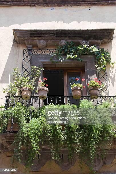 Window and balcony in San Miguel de Allende (San Miguel), Guanajuato State, Mexico, North America