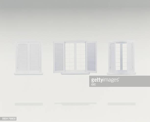 Window and window shutters