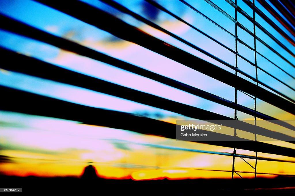 Window blind : Stock Photo