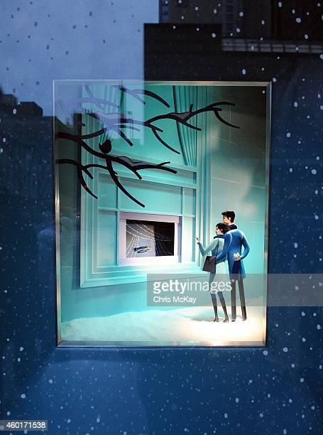Window displays at Tiffany Co on December 08 2014 in Chicago Illinois