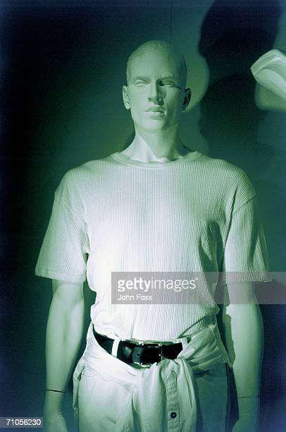 window dummy - male likeness stock pictures, royalty-free photos & images