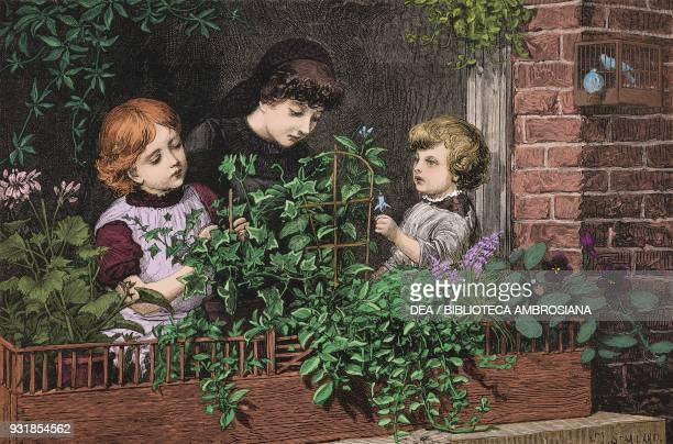Window gardening for children recreation for the London poor illustration from The Graphic volume XXVIII no 710 July 7 1883 Digitally colorized image