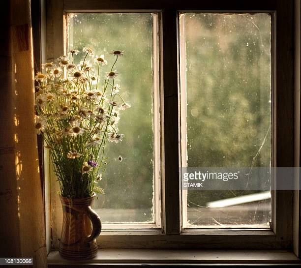 Window in a country-house