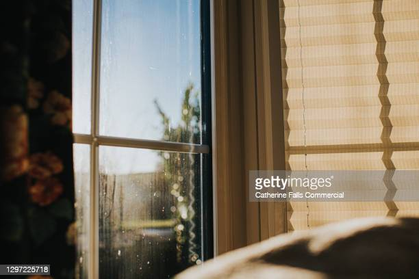 window in a living room. one blind open and the other is closed - house stock pictures, royalty-free photos & images