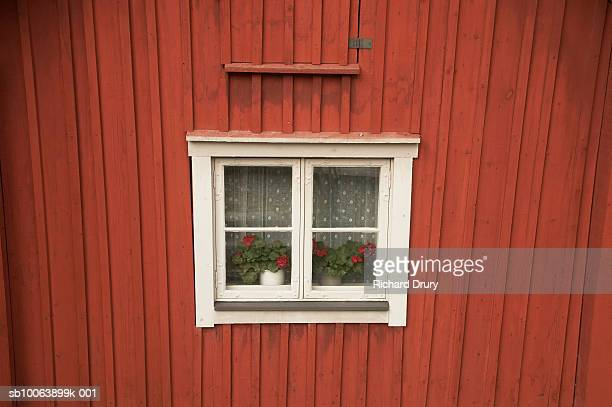window in traditional swedish house - richard drury stock pictures, royalty-free photos & images