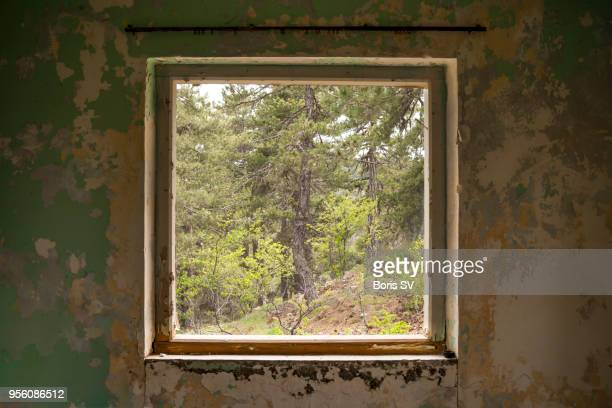 window into enchanted pine forest, abandoned log cabin - window frame stock pictures, royalty-free photos & images