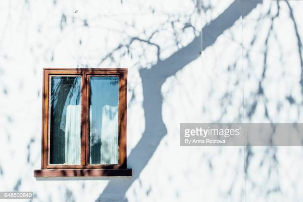 Window on white wall with shadows from trees